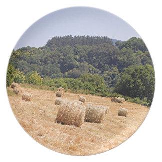 Balas de heno a lo largo del EL Camino, España Platos De Comidas