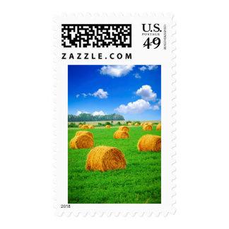 Balas de heno de oro en campo verde sello