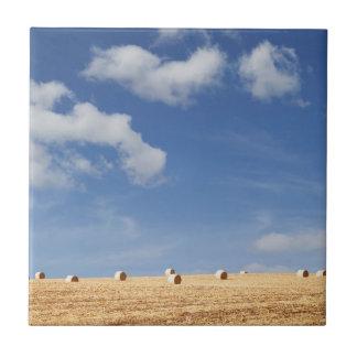 Balas de heno en campo azulejo cuadrado pequeño