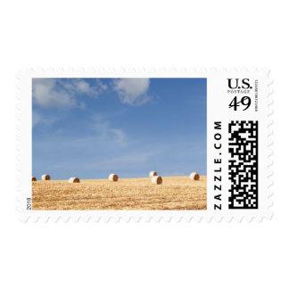 Balas de heno en campo sellos