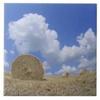 Balas de heno en el campo, Pienza, d'Orcia de Val, Azulejo Cuadrado Grande