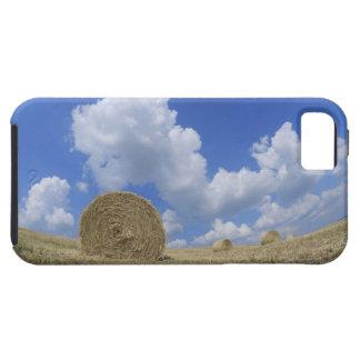 Balas de heno en el campo, Pienza, d'Orcia de Val, iPhone 5 Cobertura