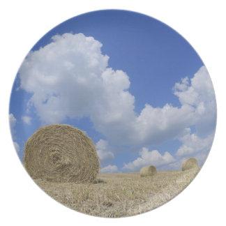 Balas de heno en el campo, Pienza, d'Orcia de Val, Plato