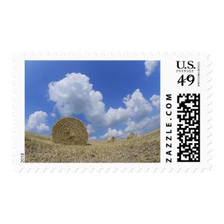 Balas de heno en el campo, Pienza, d'Orcia de Val, Sellos