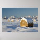 Balas de heno nevadas póster