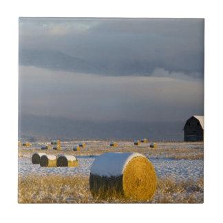 Balas rústicas del granero y de heno después de azulejo cuadrado pequeño