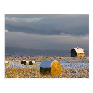 Balas rústicas del granero y de heno después de postales