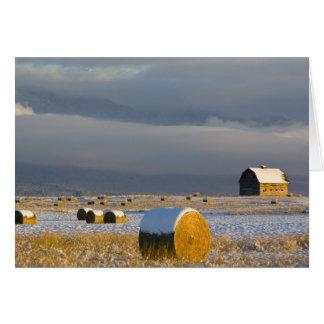 Balas rústicas del granero y de heno después de un tarjeta de felicitación