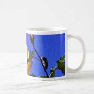 Balboa Park Yellow Roses Garden Coffee Mug
