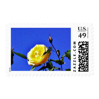 Balboa Park Yellow Roses Garden Postage Stamp