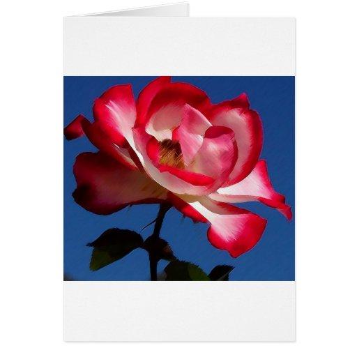 balboa-parque-rosas picosegundo LARGE.jpg Tarjetas