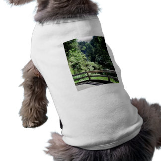 Balcony Falls Shirt