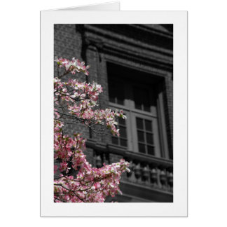 Balcony to Spring Card