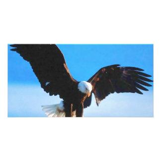 Bald American Eagle Custom Photo Card