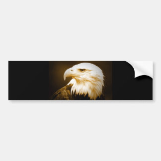 Bald American Eagle Eye Bumper Sticker
