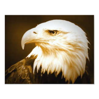 Bald American Eagle Eye 4.25x5.5 Paper Invitation Card
