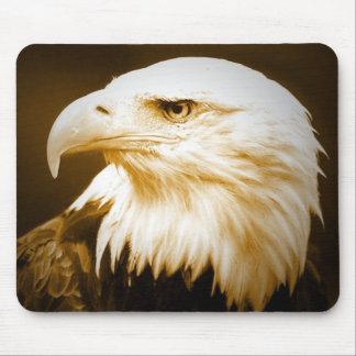 Bald American Eagle Eye Mouse Pad