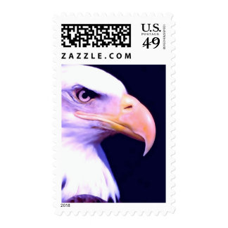 Bald American Eagle Eye Stamp