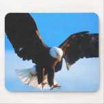 Bald American Eagle Mousepad