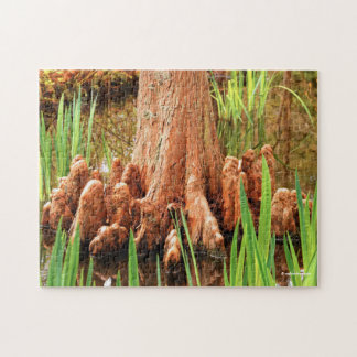 Bald Cypress Knees Jigsaw Puzzle