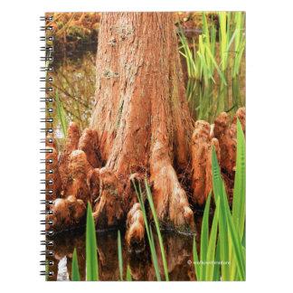 Bald Cypress Knees Notebook