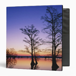 Bald cypress trees silhouetted at sunset, 3 ring binder