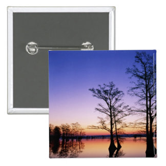 Bald cypress trees silhouetted at sunset, 2 inch square button