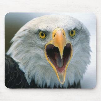 Bald Eagle #2-Mousepad Mouse Pad