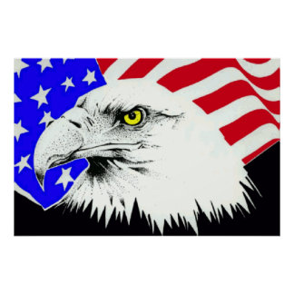 Bald Eagle 4th Of July Poster 1