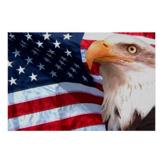 Bald Eagle 4th Of July poster 8