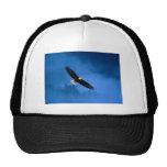 Bald-Eagle-Alaska Trucker Hat