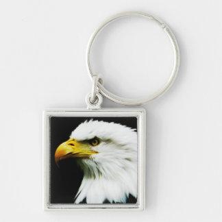 Bald Eagle - American Eagle Photograph Keychain
