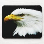 Bald Eagle - American Eagle Photograph Mouse Pad