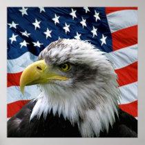 Bald Eagle American Flag Print