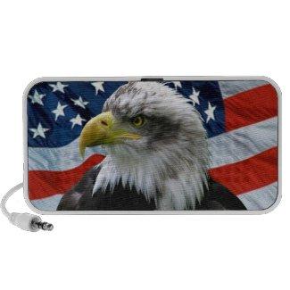 Bald Eagle American Flag doodle