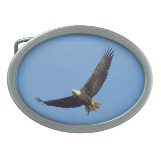 Bald Eagle- American Mammal Collection Oval Belt Buckle