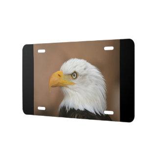 Bald Eagle American Patriotic Honor Animal Nature License Plate