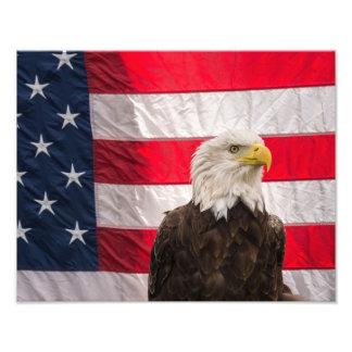 Bald Eagle and American Flag Photo Print