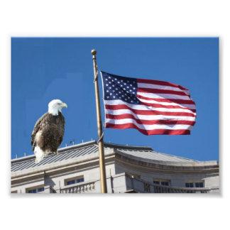 Bald Eagle And American Flag Photo Art