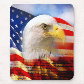 Bald Eagle and The American Flag Mouse Pad