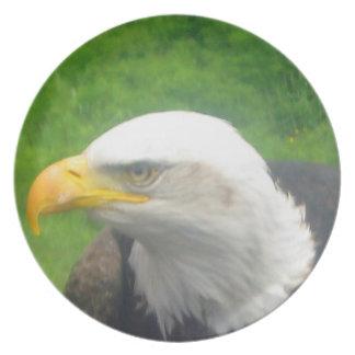 Bald Eagle Art Decor Plate