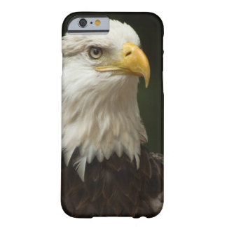 Bald Eagle Barely There iPhone 6 Case