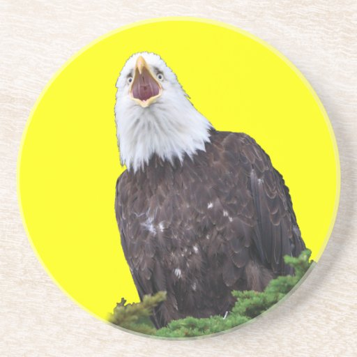 bald eagle beverage coaster