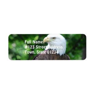 Bald Eagle Bird Mailing Label