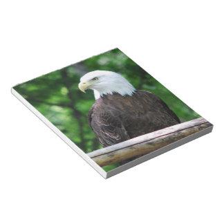 Bald Eagle Bird Notepad
