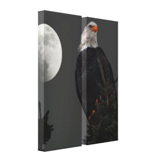 Bald Eagle by Moonlight Double-Panel Canvas
