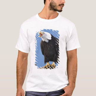 Bald Eagle calling, Homer, Alaska, Haliaetus T-Shirt