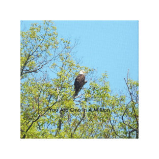 Bald Eagle Canvas One in a Million
