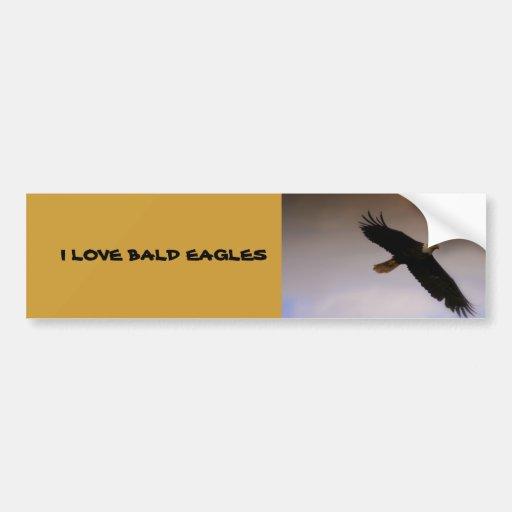 Bald Eagle Car Bumper Sticker