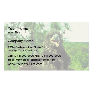 Bald Eagle Chick Business Card